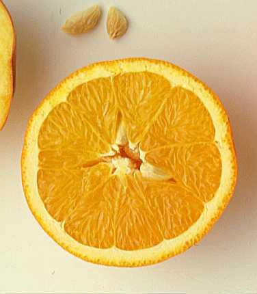 appelsin1