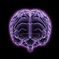 Højre og venstre hjerne konflikt.