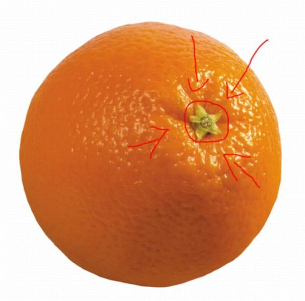 appelsin2