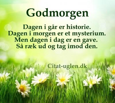 søde godmorgen citater Facebook Billed Hilsner   Godmorgen : Citat uglen.dk søde godmorgen citater