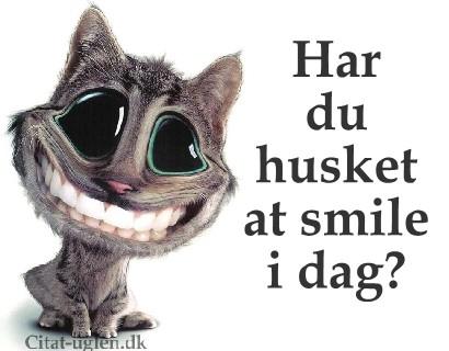 sjove billeder med citater Facebook Billede Hilsner   Sjove : Citat uglen.dk sjove billeder med citater