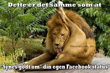 sjove facebook citater Facebook Billede Hilsner   Sjove : Citat uglen.dk sjove facebook citater