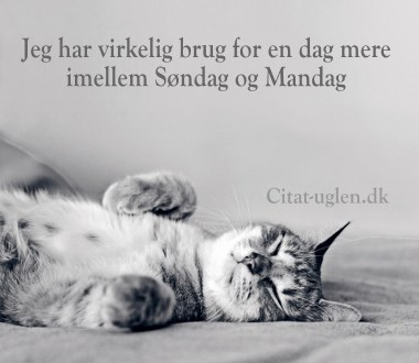 citater om weekend Facebook Billede Hilsner   Weekend : Citat uglen.dk citater om weekend